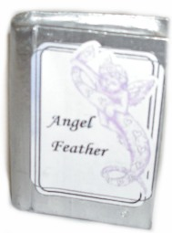 Angel Feather Case