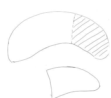 Banana plushie pattern