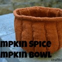 Knitted Pumpkin Bowl Pattern