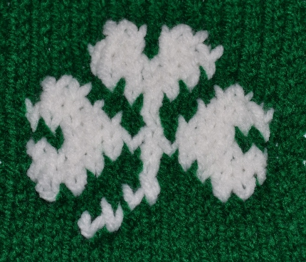 shamrock closeup