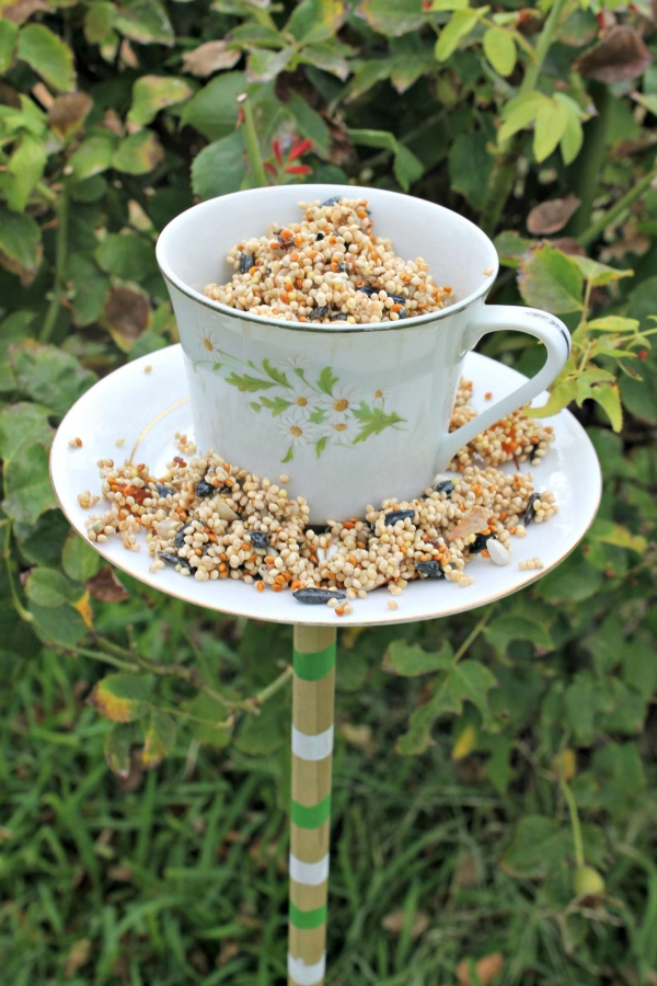 """ \""teacup bird feeders (6)\"""""